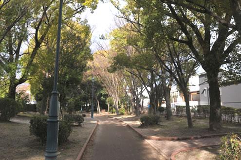 緑のトンネルを駆け抜ける。元茨木川緑地コース(茨木市) | 大阪 ...